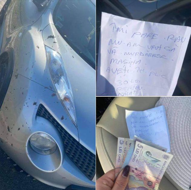 Ce a găsit o șoferiță în parbriz. A rămas fără cuvinte!